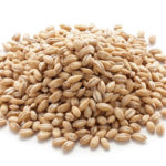 grains pearl barley